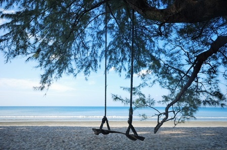 Swing the picture on the beach during the day for relaxation