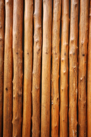 pine wood texture wall for decorate Stock Photo - 15513851