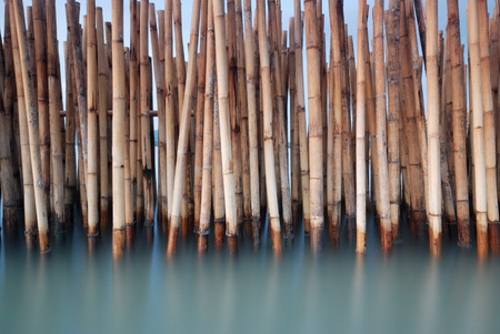 bamboo fence protect sandbank from sea wave photo