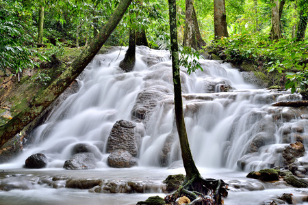 phangnga: Waterfall in deep forest, phangnga,Thailand