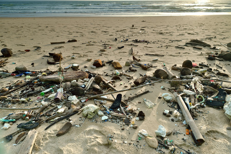 polluted: Beach pollution. Every day, Garbage on the beach