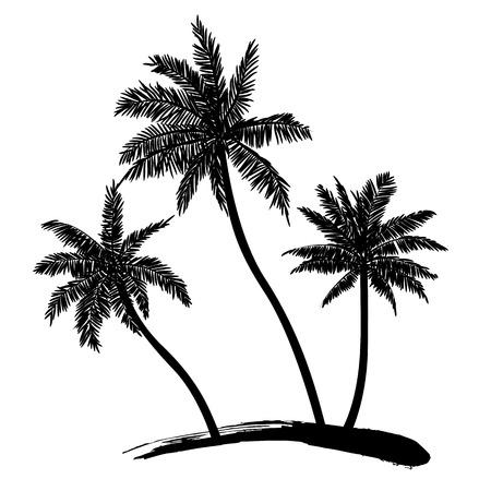 feuille arbre: Palmiers tropicaux, des silhouettes noires sur fond blanc Vecteur