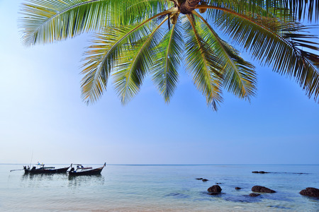 longtail: Coconut palms tree on sand beach in tropical island , with longtail boat Stock Photo