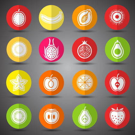 lychee: Collection of Fruits set hand drawn vector,illustration