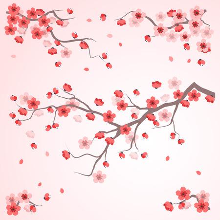flor de sakura: Pintura de estilo oriental, flor de cerezo en la primavera de tiempo ilustración vectorial
