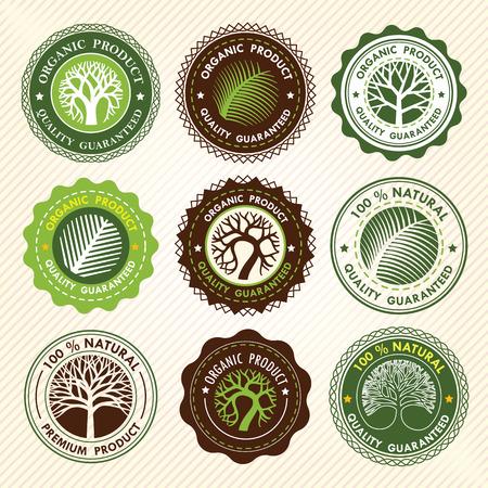 녹색 원 트리 벡터 레이블 디자인. 에코 개념입니다 그림입니다.
