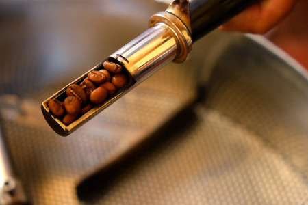 sampling: hand holding sampling of coffee beans during roasting process Stock Photo
