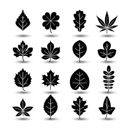 Icônes de la ligne de feuille d'arbre Outlined, illustration vectorielle Banque d'images - 44668584
