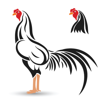 fight: Game-cock hand drawn sketch on white background , vector illustration Illustration