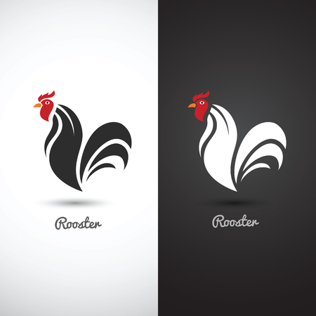 rooster: Rooster and cock hand drawn sketch on white background , vector illustration