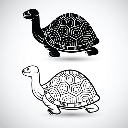 ancient turtles: chinese turtle art on white background,vector illustration Illustration