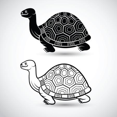 chinese turtle art on white background,vector illustration Illustration