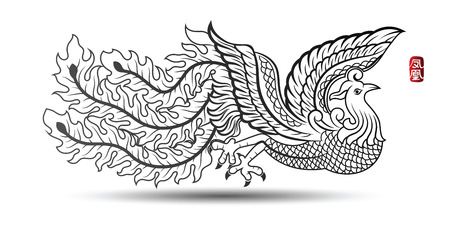 traditional illustration: Illustration of Traditional Chinese phoenix ,vector illustration