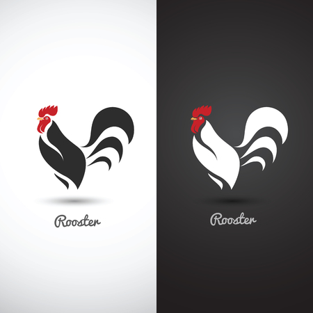 cock hand: Rooster and cock hand drawn sketch on white background , vector illustration
