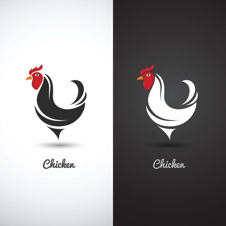 cock: Chicken and cock hand drawn sketch on white background , vector illustration