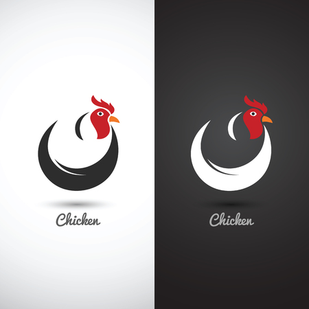 gallo: Gallo y la polla mano boceto dibujado sobre fondo blanco, ilustraci�n vectorial