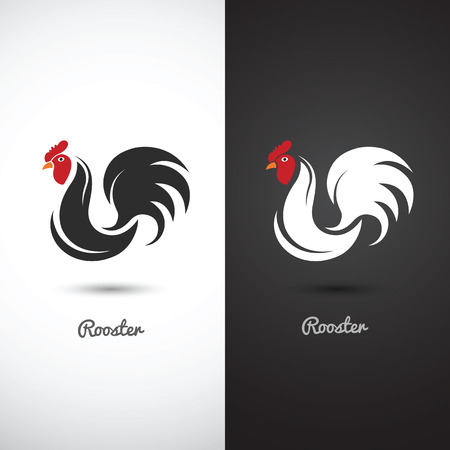 cock: Rooster and cock hand drawn sketch on white background , vector illustration