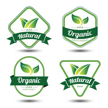 Set of eco labels and badges,emblem with leaves ,vector illustration