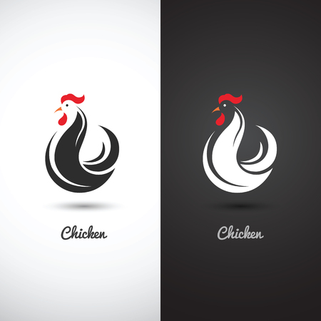 poultry: Chicken and cock hand drawn sketch on white background , vector illustration