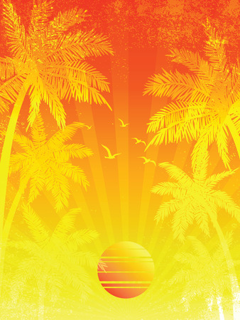summer trees: summer vacation Sunset background, with Palm trees ,vector illustration