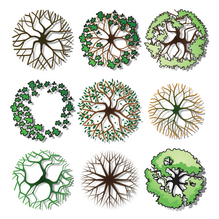 Set of trees and shrubs. Top view. use in your landscape design.vector illustration Illustration