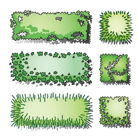 Set of trees and plant . Top view use in your landscape design. Vector illustration Illustration