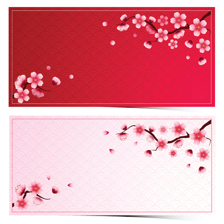 cherry blossom template on pink background with frame pattern vector illustration