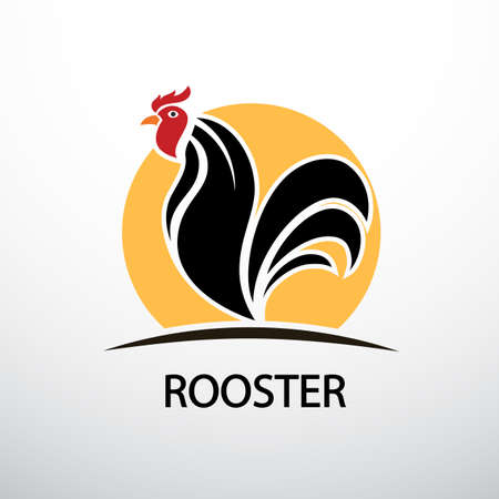 Rooster and cock hand drawn sketch on white background , vector illustration
