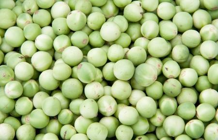Green Pea eggplants background Texture