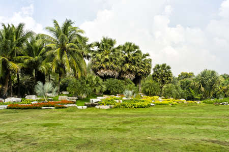 Green garden view photo