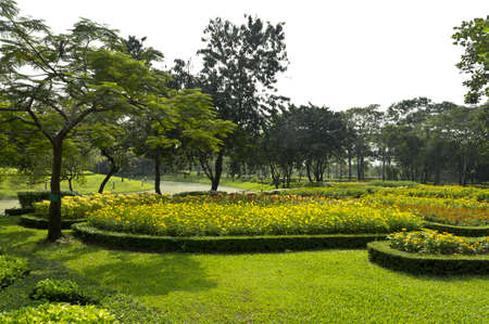 flowerbeds: Flowerbeds and lawn in Park