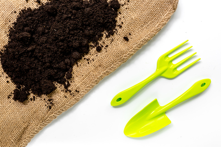 gardening equipment with rake and trowel for growing plants on white desk background top view