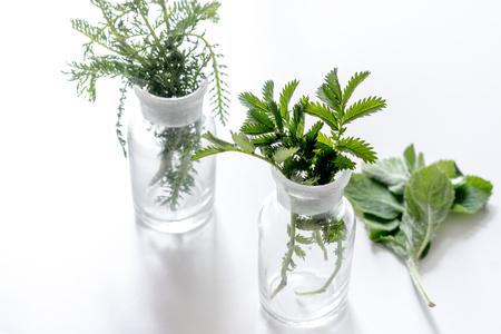 Fresh medicinal herbs in glass on white background. 版權商用圖片
