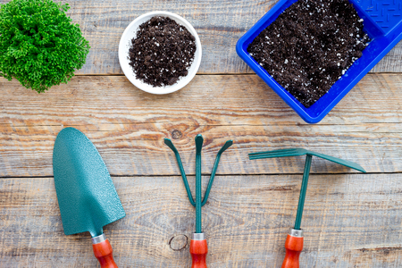 Gardening tools on wooden background top view.