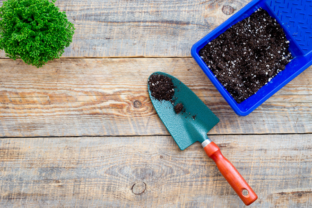 Gardening tools on wooden background top view. Stock Photo - 81928260