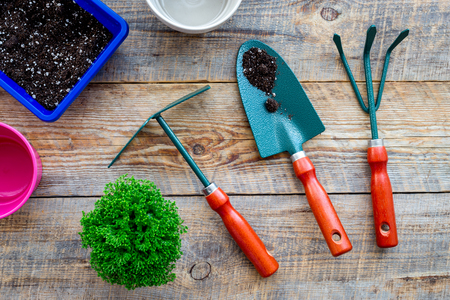 To plant flowers. Gardening tools and pots with soil on wooden background top view
