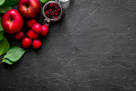 Apple, pulm and cranberry for summer ice drink on black table top view copyspace. Stock Photo