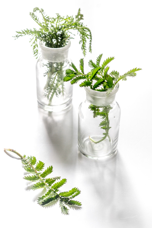 Fresh medicinal herbs in glass on white background. Reklamní fotografie