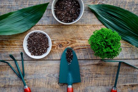 Bloemen planten. Het tuinieren hulpmiddelen en potten met grond op houten hoogste mening als achtergrond.