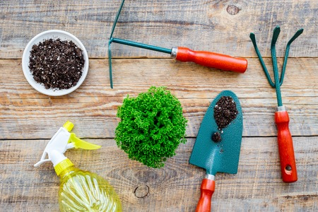 Working in garden. Gardening tools and pots with soil on wooden background top view Stock Photo