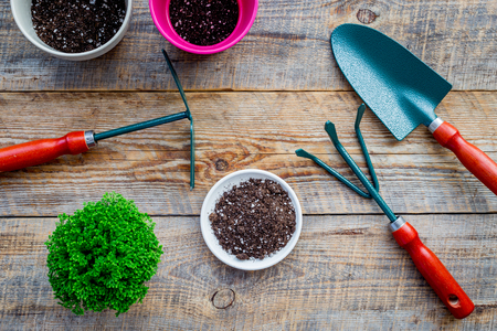 To plant flowers. Gardening tools and pots with soil on wooden background top view. 版權商用圖片