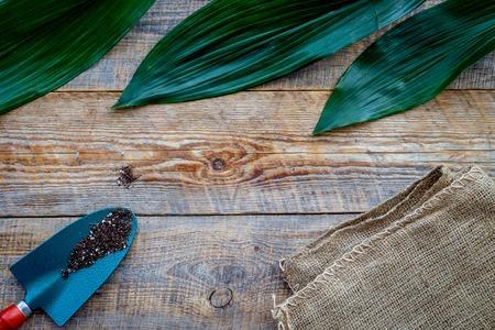 Tuin gereedschap. Schop op houten achtergrond bovenaanzicht mockup Stockfoto