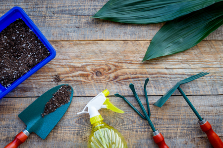 Planting flowers. Gardening tools and pots with soil on wooden background top view copyspace Stock Photo