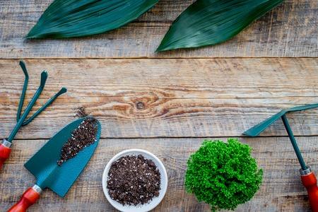 Bloemen planten. Het tuinieren hulpmiddelen en potten met grond op houten hoogste mening als achtergrond copyspace