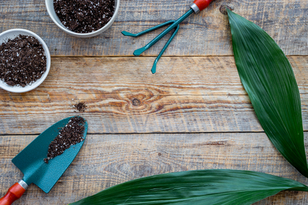 Working in garden. Shovel and pots with soil on wooden background top view copyspace