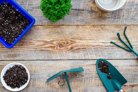 Werken in de tuin. Het tuinieren hulpmiddelen en potten met grond op houten hoogste mening als achtergrond copyspace
