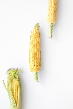 Organic farm food. Corn on cobs on white background top view. Stock fotó