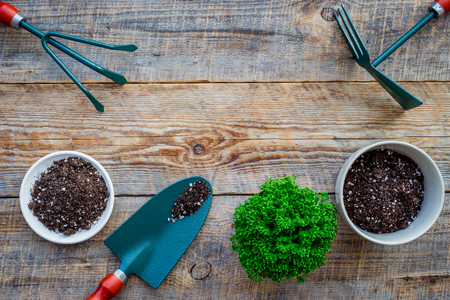 Working in garden. Shovel and pots with soil on wooden background top view. Stock Photo - 83285015