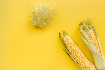 Corn on cobs on yellow background top view copyspace Stock Photo