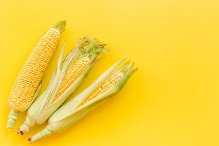 노란색 배경에 cobs에 옥수수 상위보기 copyspace